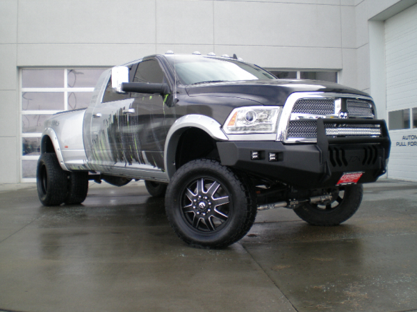 Bumper Brush Guard
